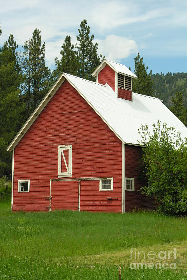 Green Photograph - Red Barn Montana by Diane Greco-Lesser