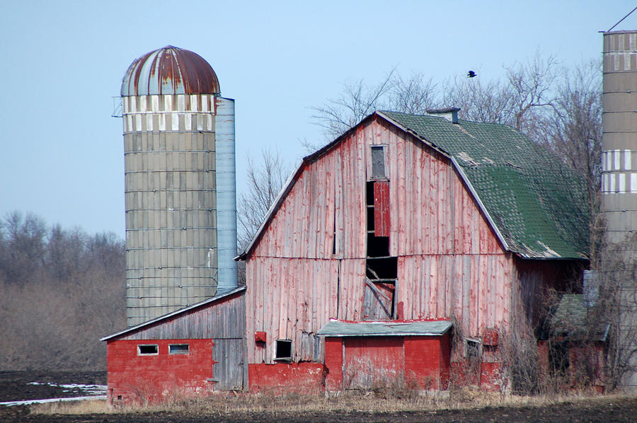 Old Barn Photograph - Red Barn On Texas Avenue by Mary Pearson