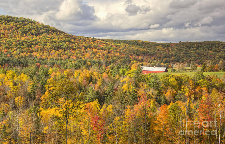 Colorful Trees Photograph - Red barn on the hill by Diana Nault