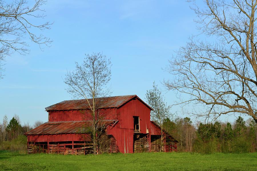 Barn Photograph - Red Barn by Rhonda Dykes