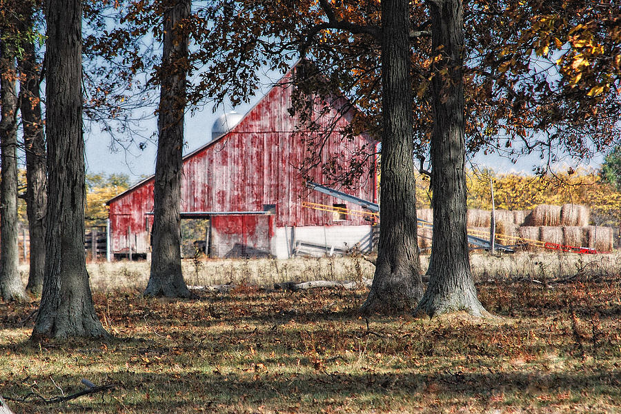 Agriculture Photograph - Red Barn Through The Trees by Pamela Baker