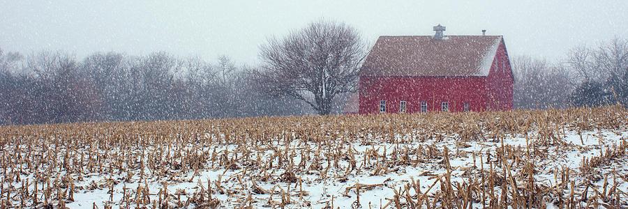 Red Barn Photograph - Red Barn - Winter Field by Nikolyn McDonald
