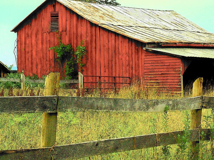 Barn Photograph - Red Barn With Vines by Michael L Kimble
