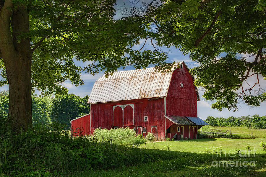 Red Barn With White Arched Door Trim Photograph By Priscilla Burgers