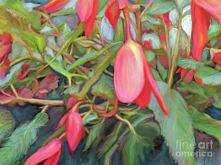 Red Begonia by CR Leyland
