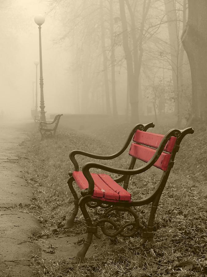 Alley Photograph - Red Bench In The Fog by Jaroslaw Grudzinski