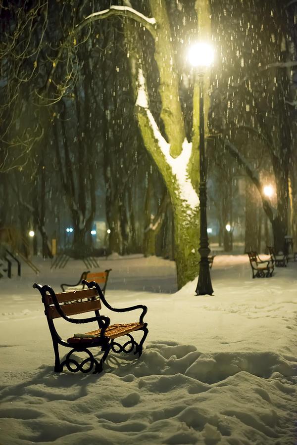 Background Photograph - Red Bench In The Park by Jaroslaw Grudzinski