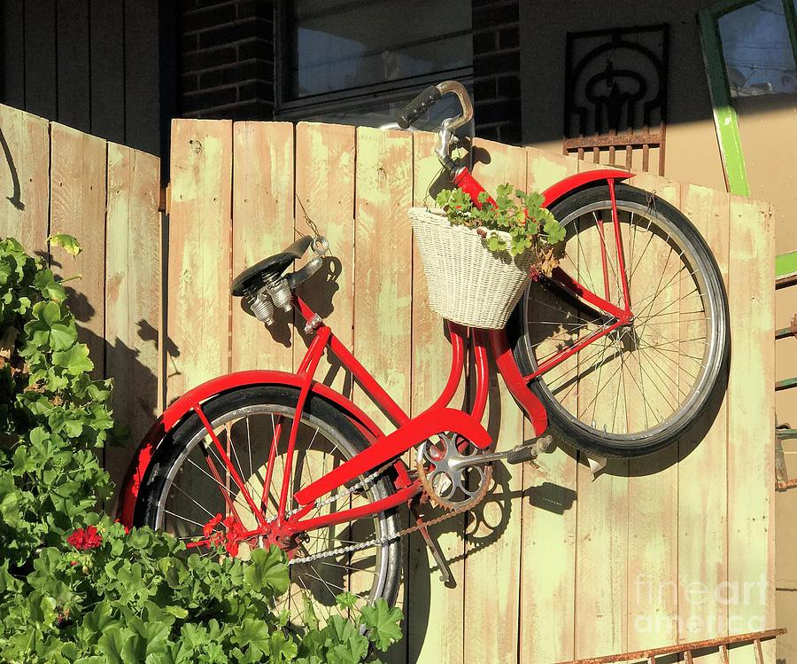 Red Bike Photograph
