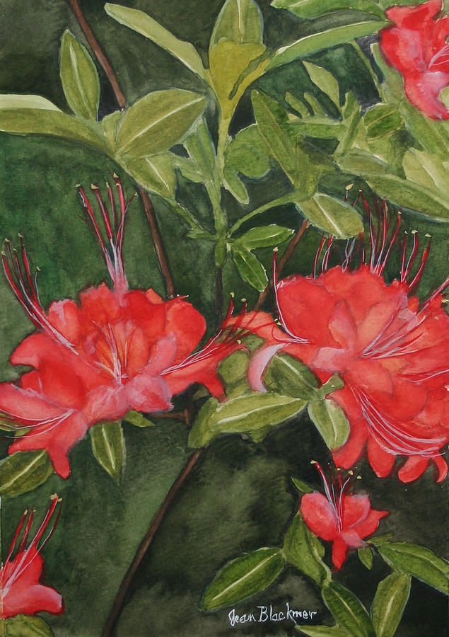 Flowers Painting - Red Blooms on the Parkway by Jean Blackmer