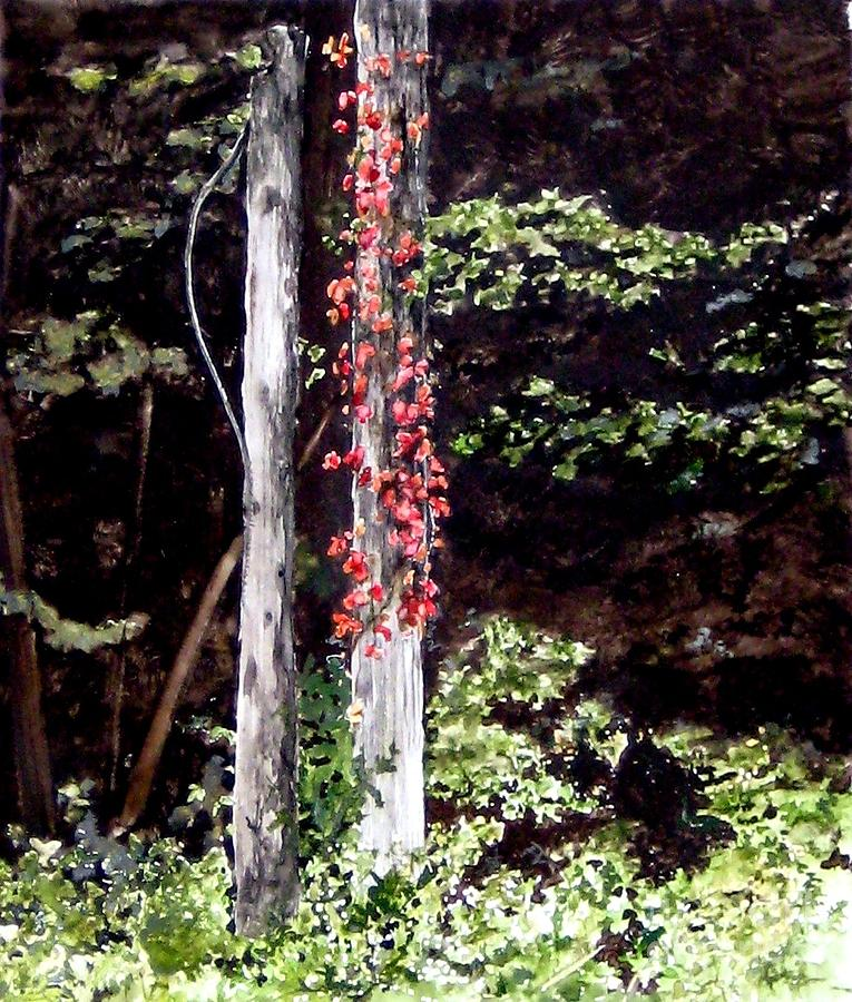 Virginia Creeper Painting - Red Creeper by Carla Dabney
