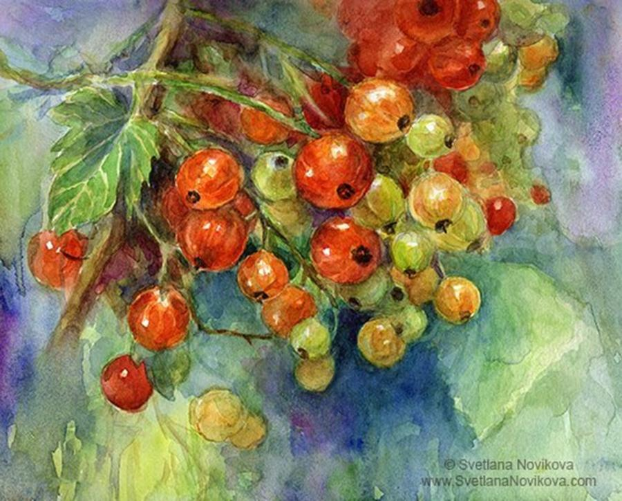 Artsy Photograph - Red Currants Berries Watercolor by Svetlana Novikova