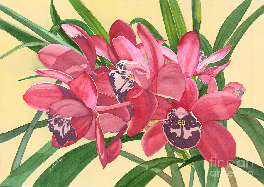 Red Cymbidiums - Orchids Watercolor by Hao Aiken