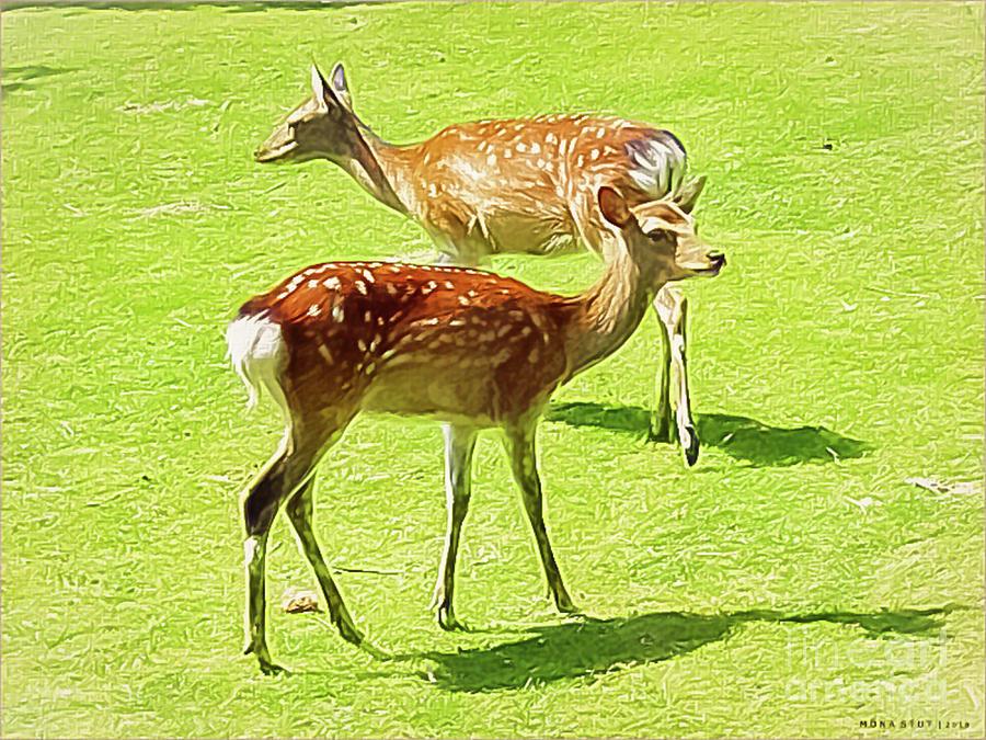 Red Deer Fawns Digital Art