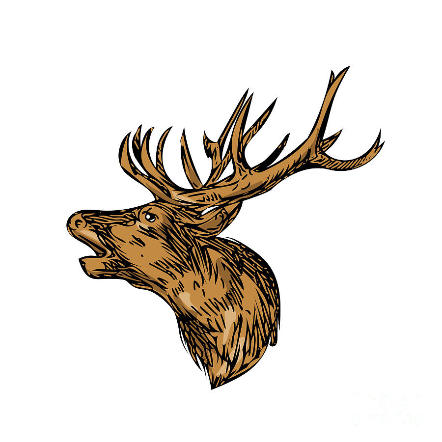 wall faux resin antlers stag white products w mount head black decor deer taxidermy mini