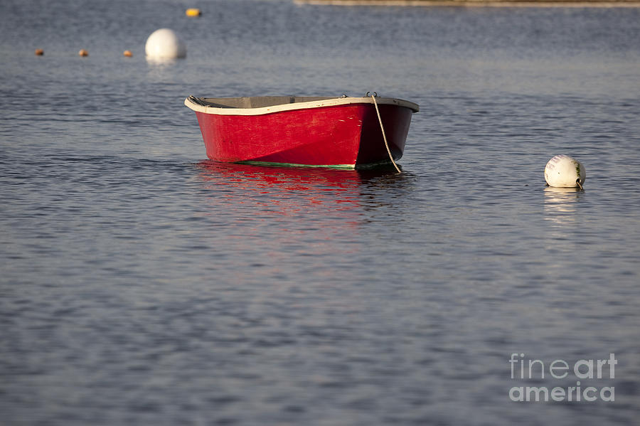 Red Photograph - Red Dingy - Rye Harbor New Hampshire Usa by Erin Paul Donovan