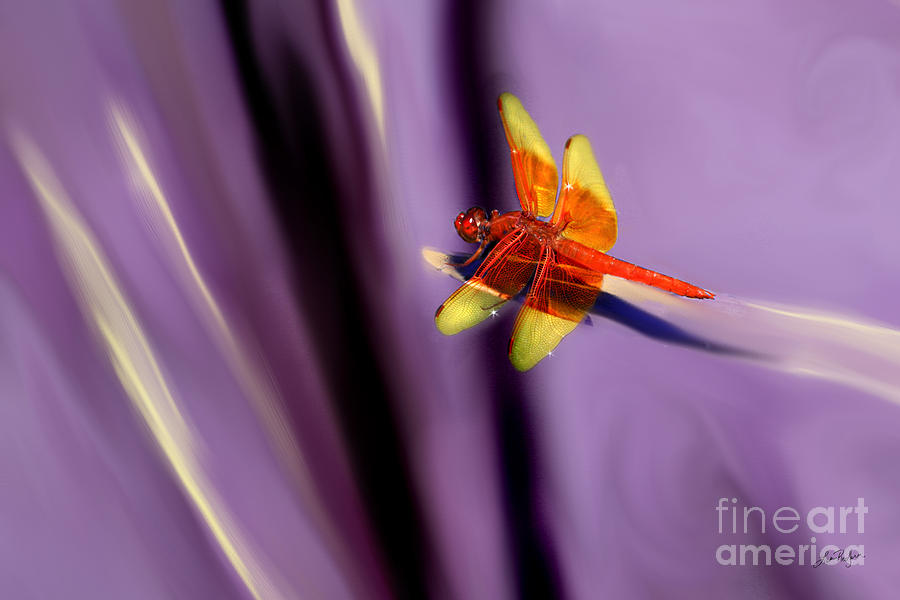 Dragonfly Mixed Media - Red Dragonfly On Purple Background by Lisa Redfern