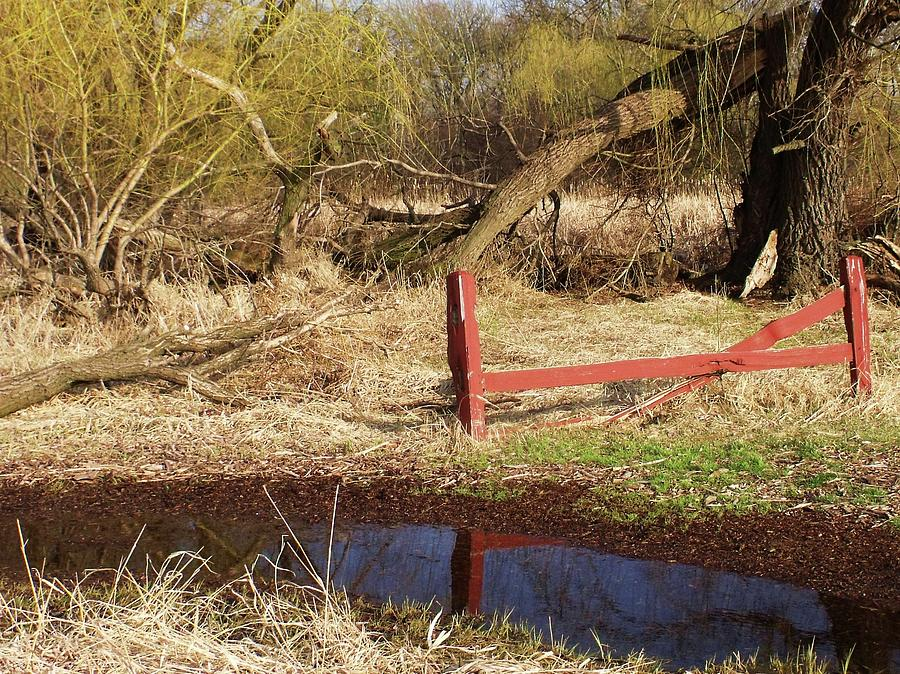 Red Photograph - Red Fence by Anna Villarreal Garbis
