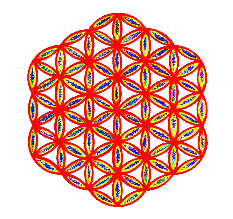Sacred Geometry Drawing - Red Flower Of Life by Chandelle Hazen