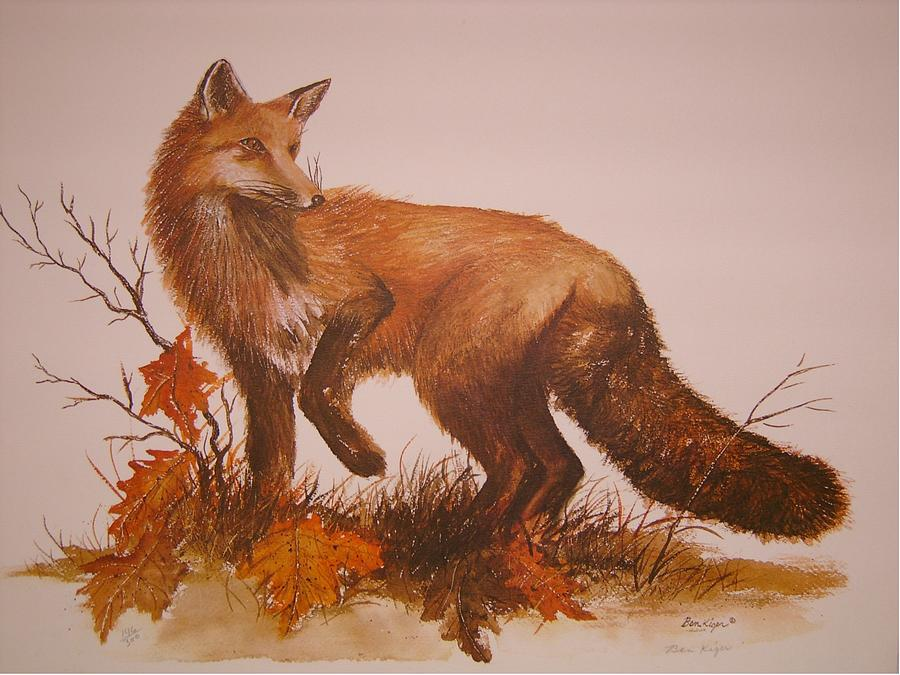 Nature Painting - Red Fox by Ben Kiger