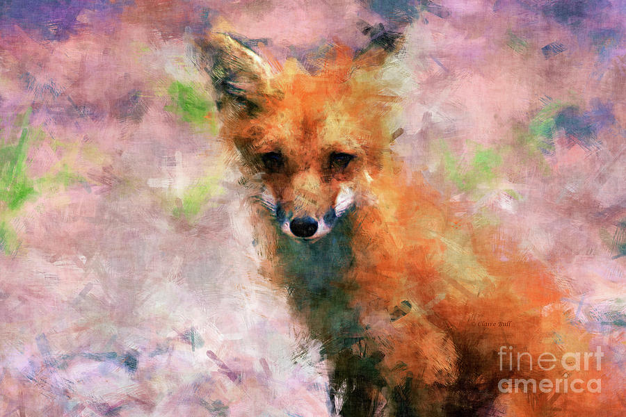 Fox Digital Art - Red Fox  by Claire Bull