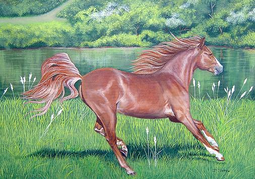 Colt Painting - Red Freedom by Diane Deason
