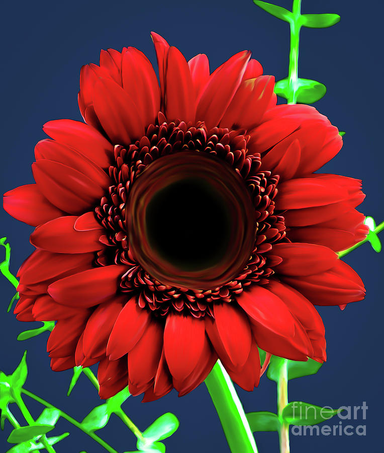 Red Gerbera Daisy Painted version 1 by Chandra Nyleen