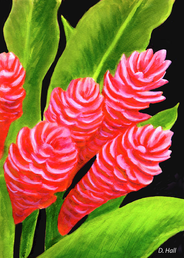 Red Ginger Painting - Red Ginger Flowers #235 by Donald k Hall