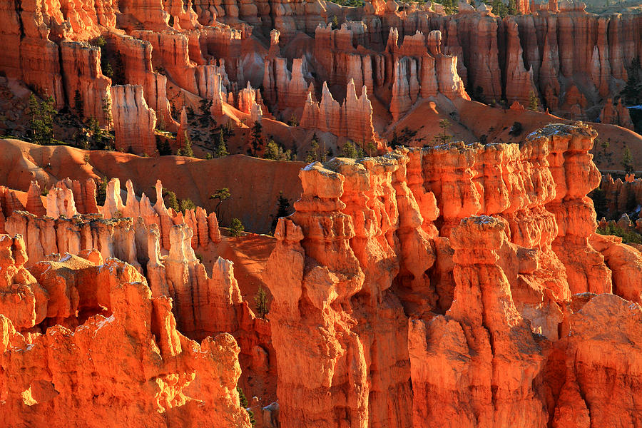 Bryce Photograph - Red Glow On Hoodoos Of Bryce Canyon by Pierre Leclerc Photography