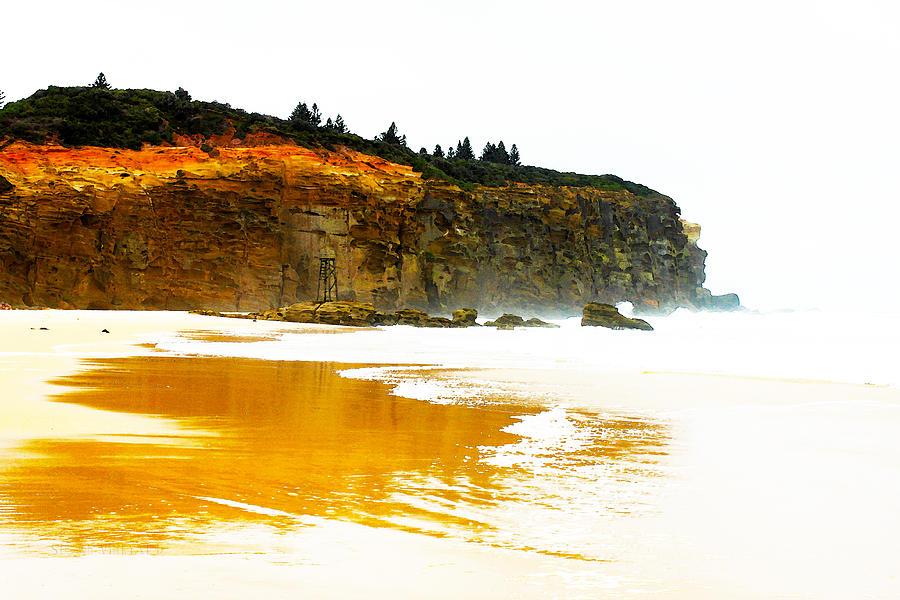 Nsw Photograph - Red Head Beach by Susan Vineyard