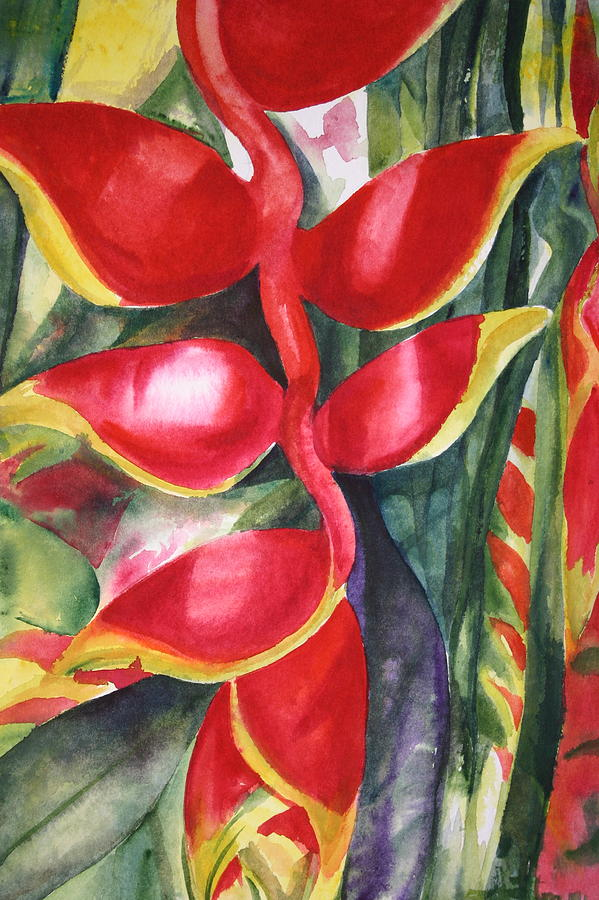Red Heliconia Painting by Ileana Carreno