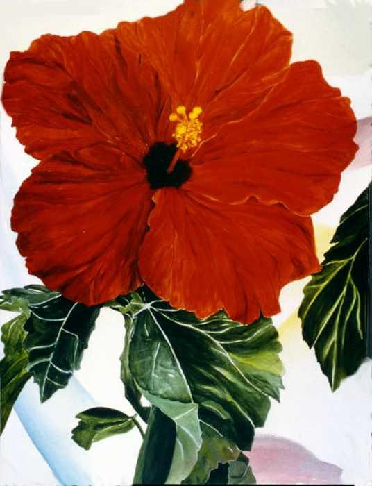 Red Hibiscus Painting by Selma Cooper