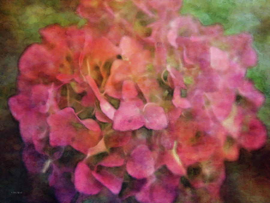 Impressionist Photograph - Red Hydrangea 2421 Idp_2 by Steven Ward