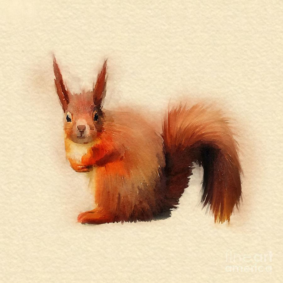 Red Squirrel Digital Art - Red Squirrel by John Edwards