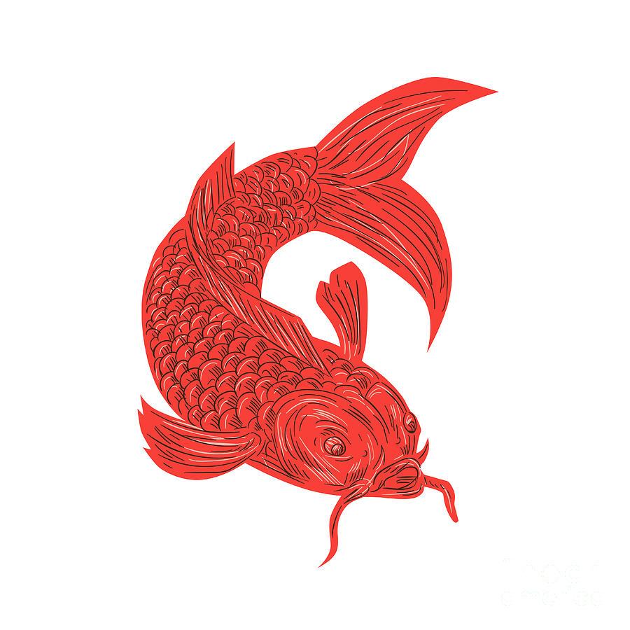 Red koi nishikigoi carp fish drawing digital art by for Red koi fish