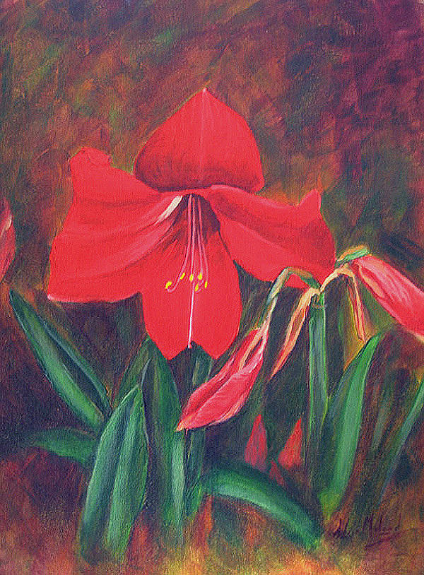 Floral Painting - Red Lily by Aileen McLeod