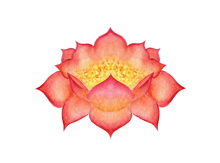 Red Lotus by Elizabeth Lock