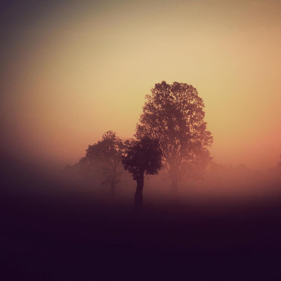 Mist Photograph - Red Mist by Yo Choowa