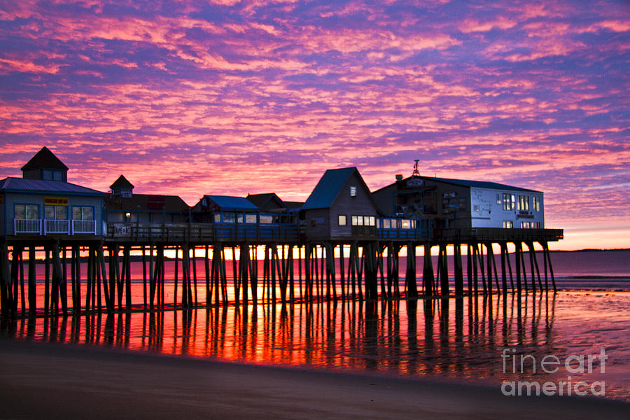 Red Photograph - Red Morning by Brenda Giasson
