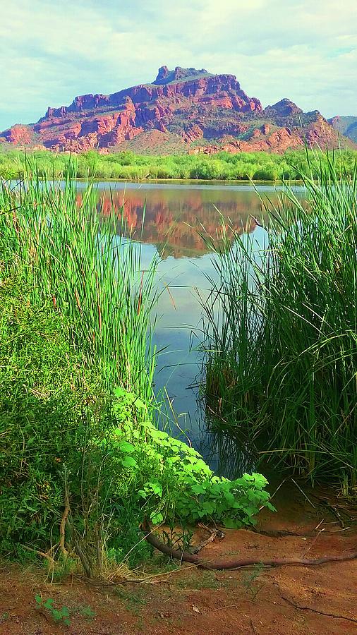 Red Mountain @ Salt River by Cheryl Fecht