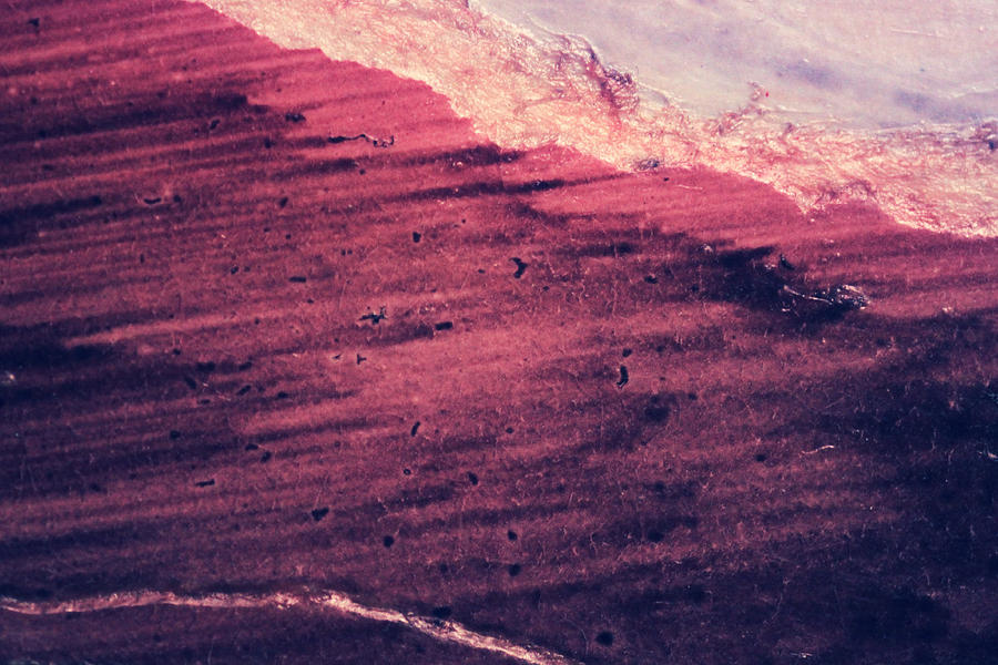 Abstract Expressionism Photograph - Red Ocean by Ryan Kelly