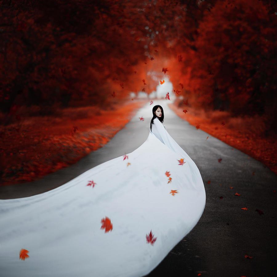 Red October Photograph by Anka Zhuravleva
