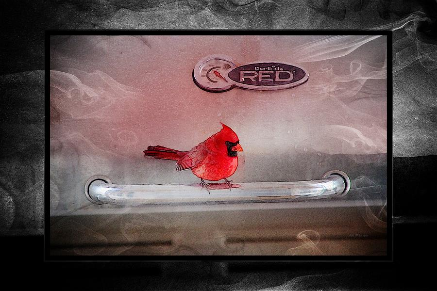 Cardinal Photograph - Red On Red by Ericamaxine Price