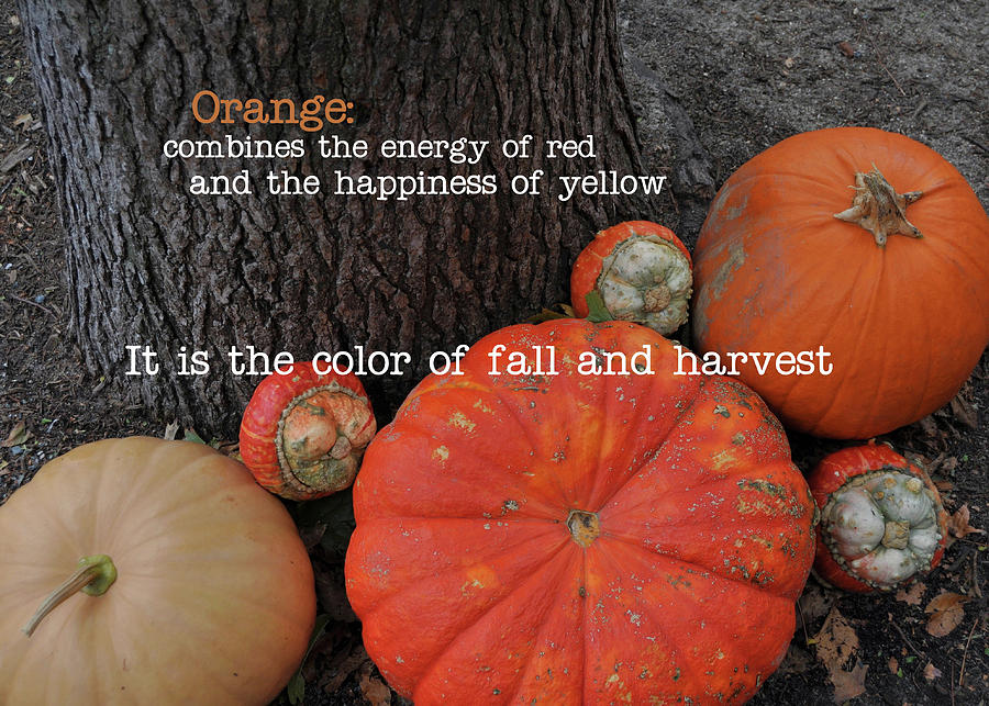 Red Photograph - Red Orange Quote by JAMART Photography