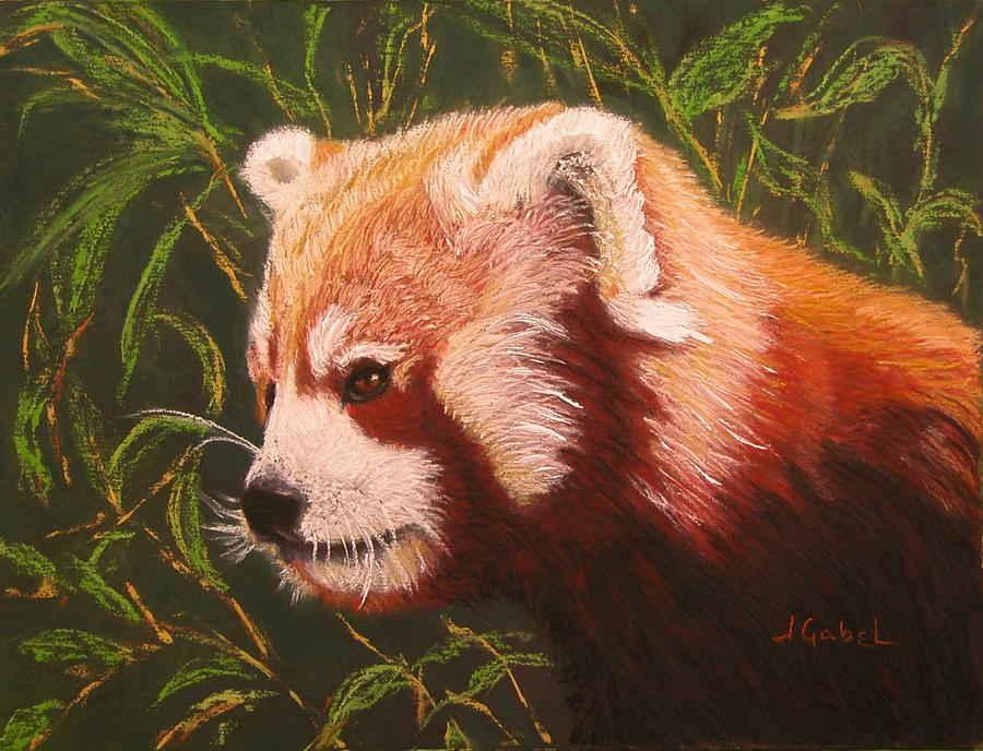 Pastel Pastel - Red Panda 2 by Laura Gabel
