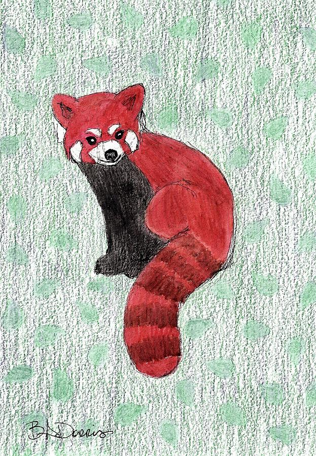 Red Panda by Brittany Dorris