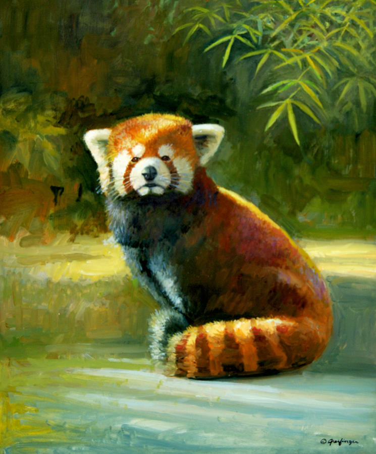 Red Panda by Mel Greifinger