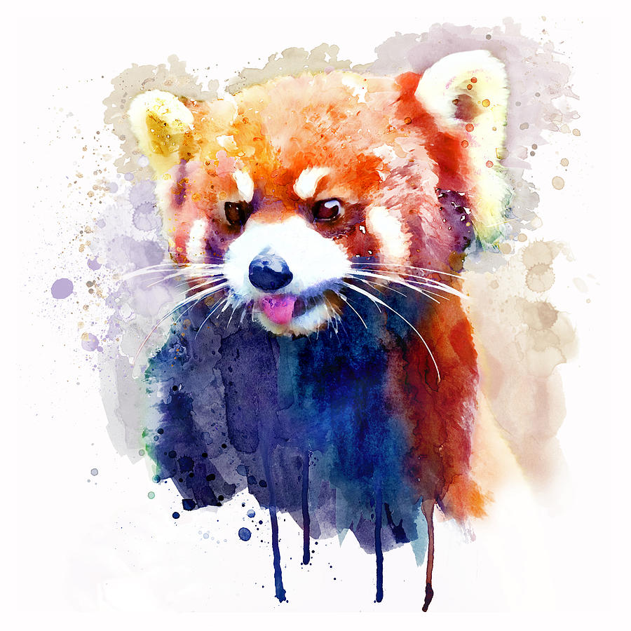 Red Panda Painting - Red Panda Portrait by Marian Voicu