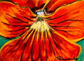 Red Pansy Close-up Painting by Yasemin Raymondo