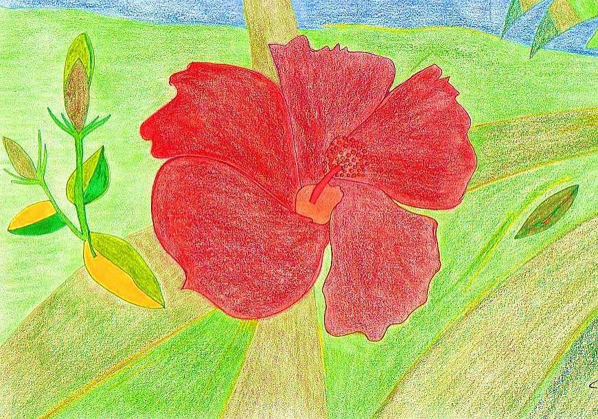 Red Flower Drawing - Red Passion by Michael Puya