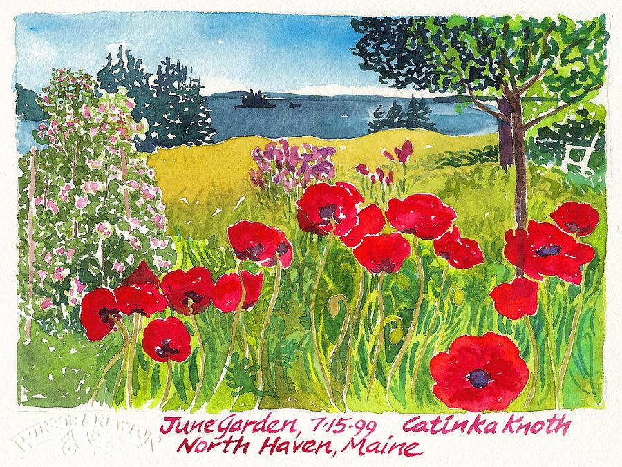 Summer Painting - Red Poppies Coastal Maine Island June Garden North Haven  by Catinka Knoth